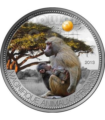 PAVIAN OLIVE BABOON Beautiful African Wildlife Silver Coin 1000 Francs Niger 2013