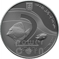GULF EILAT Aqaba Coral Reef Views Of Israel Plata Proof Moneda 2 NIS Israel 2012