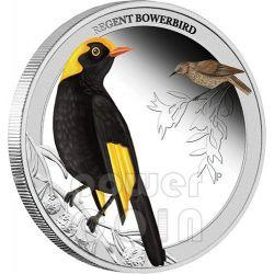 UCCELLO TESTA DORATA Regent Bowerbird Birds of Australia Moneta Argento 50c Australia 2013