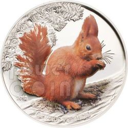 SCOIATTOLO ROSSO COLORATO Red Squirrel Colored Over The World Moneta Argento 5$ Palau 2012