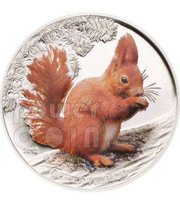 SCOIATTOLO ROSSO COLORATO Red Squirrel Colored Over The World Moneta Argento 5$ Palau 2012