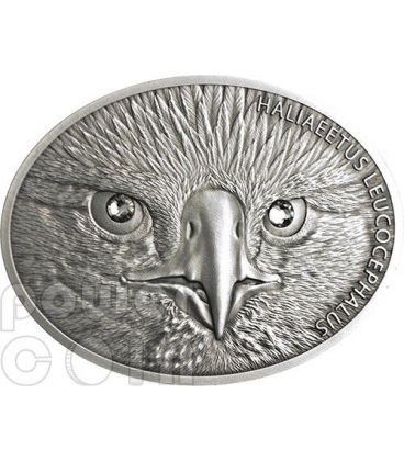 AQUILA TESTABIANCA Bald Eagle Fascinating Wildlife Moneta Argento 10$ Fiji 2013