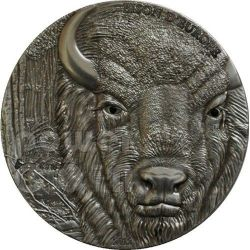 BISONTE EUROPEO Bison Moneta Argento 1500 Francs Togo 2012