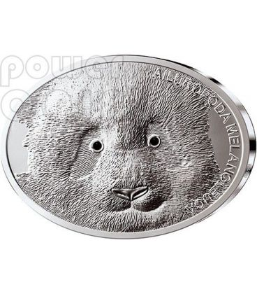 GIANT PANDA Fascinating Wildlife Silver Coin 10$ Fiji 2013