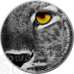 AMUR LEOPARD Panthera Pardus Orientalis Natures Eyes 2 Oz Moneda Plata 2000 Francs Congo 2013