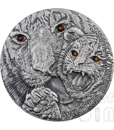 TIGRI Tigers Wildlife Family Panthera Tigris Moneta Argento 1$ Niue 2013
