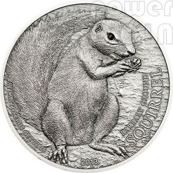 BARBARY GROUND SQUIRREL Over The World Black Swarovski Silver Coin 5$ Palau 2013