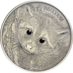 RACCOON Forest Animals Onyx Silver Coin 1 oz 50 Vatu Vanuatu 2013