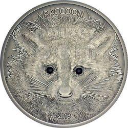 RACCOON Forest Animals Moneda Plata 1/2 oz 20 Vatu Vanuatu 2013