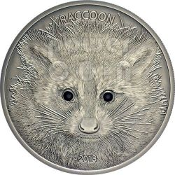 RACCOON Forest Animals Silber Münze 1/2 oz 20 Vatu Vanuatu 2013
