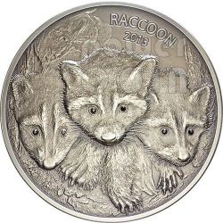 RACCOON Forest Animals Diamonds Silver Coin 2 oz 100 Vatu Vanuatu 2013