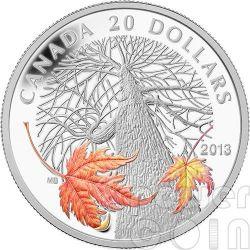 CANADIAN MAPLE CANOPY Autunno Autumn Foglia Acero Moneta Argento 20$ Canada 2013
