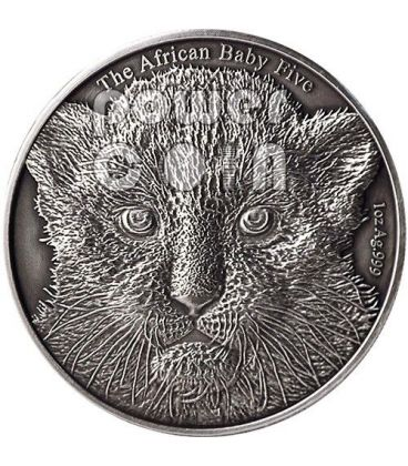 BABY LEOPARD African Baby Five 1 Oz Silver Coin 5000 Francs Burundi 2014