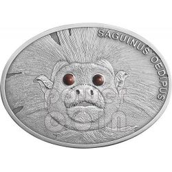 COTTON TOP TAMARIN Lisztaffe Fascinating Wildlife Silver Coin 10$ Fiji 2013