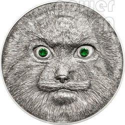 MANUL Pallas Cat Gatto Della Steppa Moneta Argento 500 Togrog Mongolia 2014