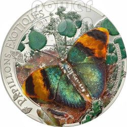 BUTTERFLY 3D Exotic Butterflies Moneda Plata 5D Central African Republic 2014