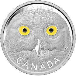 CIVETTA DELLE NEVI Snowy Owl Moneta Argento 1 Kg Kilo 250$ Canada 2014