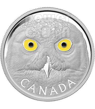 SNOWY OWL Enamel Eyes 1 Kg Kilo Silver Coin 250$ Canada 2014
