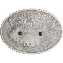 HEDGEHOG Riccio Erinaceidae Fascinating Wildlife Moneta Argento 10$ Fiji 2013
