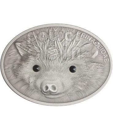 HEDGEHOG Erinaceidae Fascinating Wildlife Silver Coin 10$ Fiji 2013