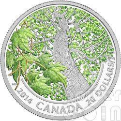 CANADIAN MAPLE CANOPY Spring Splendour Silver Coin 20$ Canada 2014