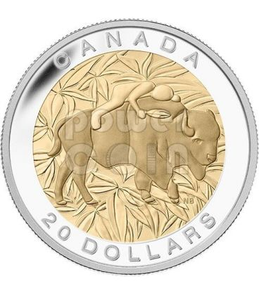 RESPECT Buffalo Seven Sacred Teachings First Nations Silver Coin 20$ Canada 2014