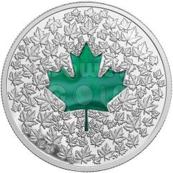 MAPLE LEAF IMPRESSION Foglia Acero Verde Moneta Argento 20$ Canada 2014