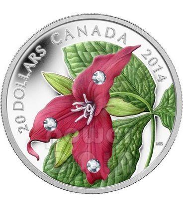 RED TRILLIUM CRYSTAL DEW Silver Coin Swarovski Crystal 20$ Canada 2014