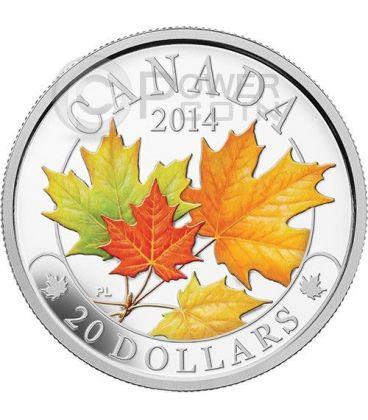 MAPLE LEAF MAJESTIC Foglia Acero Colorata Moneta Argento 20$ Canada 2014