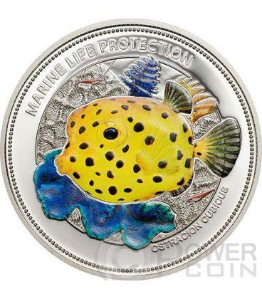 PESCE SCATOLA GIALLO Yellow Boxfish Protezione Vita Marina Moneta Argento 5$ Palau 2014