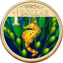 BIGBELLY SEAHORSE OCEAN SERIES Münze 1$ Australia 2007