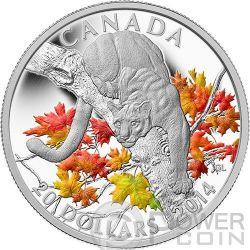 COUGAR Perched Maple Tree 1 oz Silver Proof Coin 20$ Canada 2014