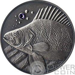 PERCH Pesce Persico Atlas Wildlife Europa Swarovski Moneta Argento 10D Andorra 2014