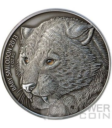 BABY SMILODON Real Eye Saber Toothed Tiger 4 Oz Silver Coin 5000 Francs Burkina Faso 2013