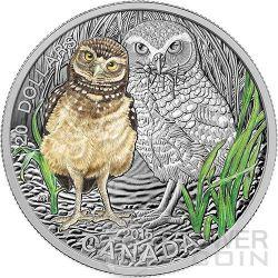 CIVETTA DELLE TANE Baby Burrowing Owl Colorata 1 oz Moneta Argento 20$ Canada 2015