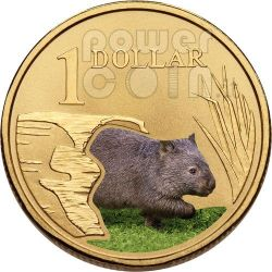 WOMBAT LAND SERIES Coin 1$ Australia 2008