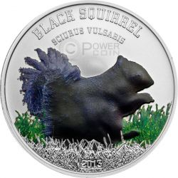 SCOIATTOLO NERO Black Squirrel Beauties Moneta Argento 5$ Cook Islands 2013