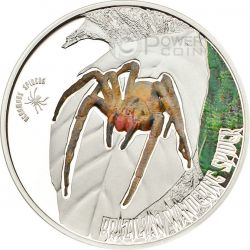 BRAZILIAN WANDERING SPIDER Banana Spider Venomous Spiders Silver Coin 2$ Cook Islands 2013