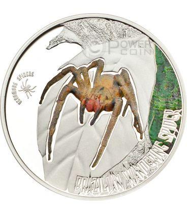 RAGNO DELLE BANANE Brazilian Wandering Spider Venomous Spiders Moneta Argento 2$ Cook Islands 2013