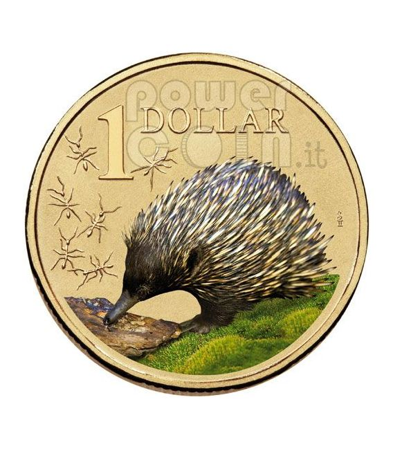 ECHIDNA LAND SERIES Moneda 1$ Australia 2009