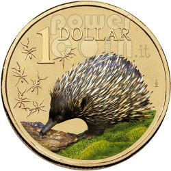 ECHIDNA LAND SERIES Coin 1$ Australia 2009