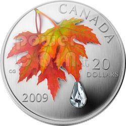 RAINDROP Crystal Swarovski Silber Münze 20$ Canada 2009