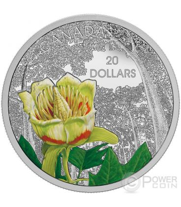 CAROLINIAN TULIP TREE Foresta Forest of Canada Moneta Argento 20$ Canada 2015