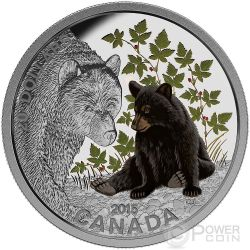 BLACK BEAR Colored 1 oz Silver Proof Coin 20$ Canada 2015