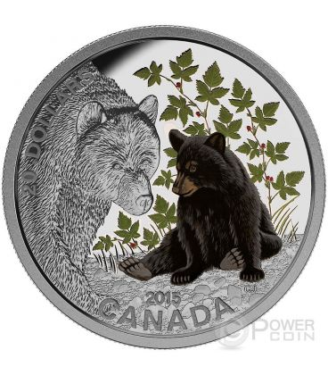 ORSO NERO Baby Black Bear Colorata 1 oz Moneta Argento 20$ Canada 2015