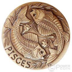 PISCES Memento Mori Zodiac Skull Horoscope Copper Coin 2015