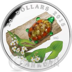 VENETIAN GLASS TURTLE Broadleaf Arrowhead Flower Murano Silver Coin 20$ Canada 2015