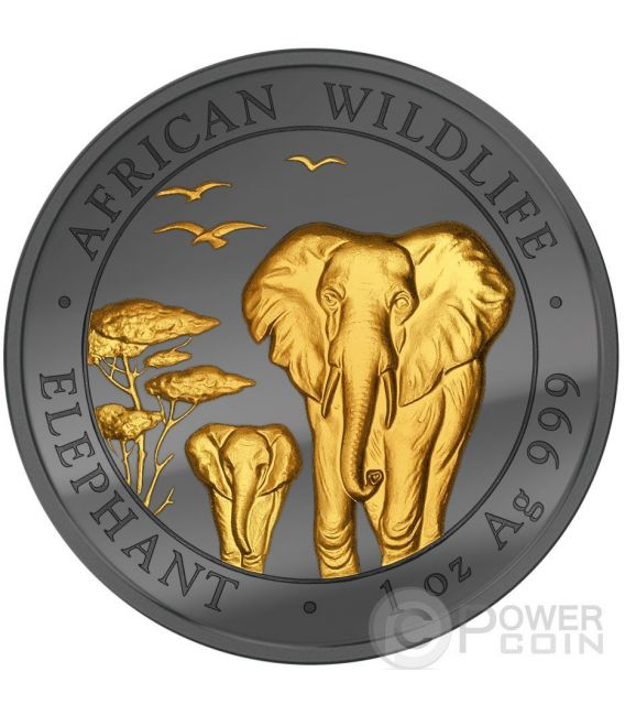 GOLDEN ENIGMA Elephant African Wildlife Black Ruthenium 1 Oz Moneda Plata 100 Shillings Somalia 2015