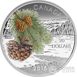 COAST SHORE PINE Pinus Contorta Forest Of Canada Moneta Argento 20$ Canada 2015