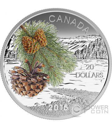 COAST SHORE PINE Forest Of Canada Silver Coin 20$ Canada 2015